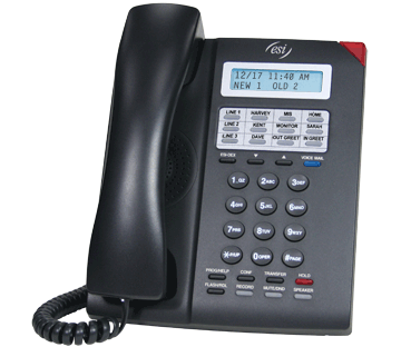 ESI 30D Business Phone